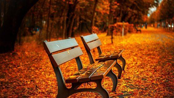 autumn-around-the-world