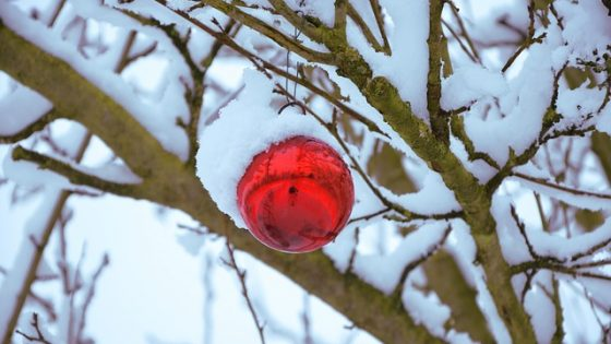 christmas related idioms and phrases - Christmas Idioms