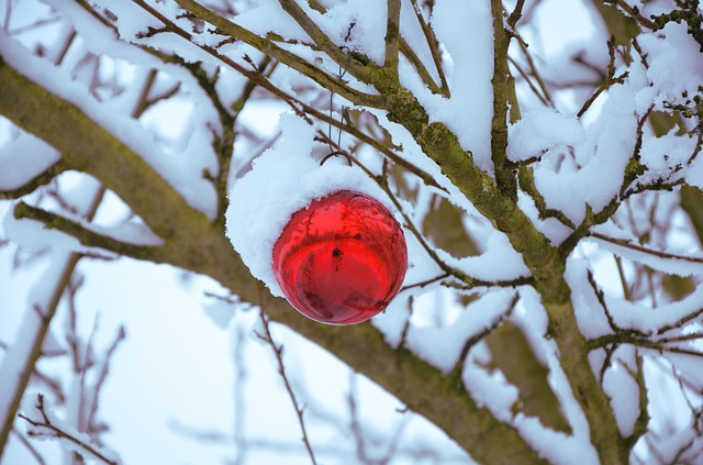 Christmas-idioms-and-phrases