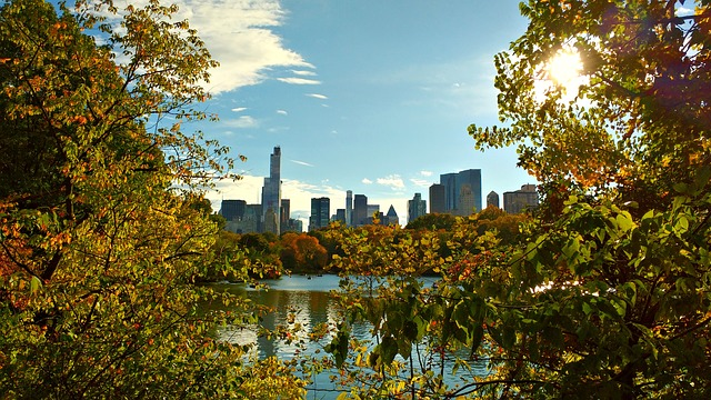 central parknew-york-1046218_640