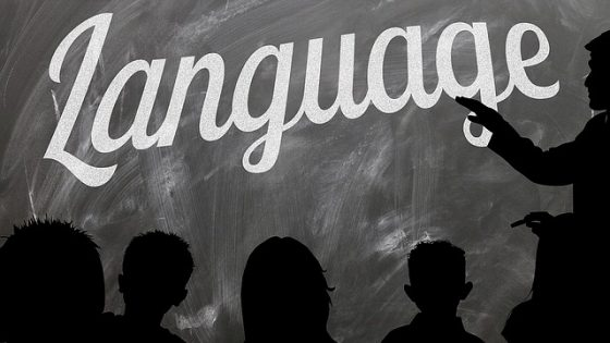 succeed-in-learning-languages