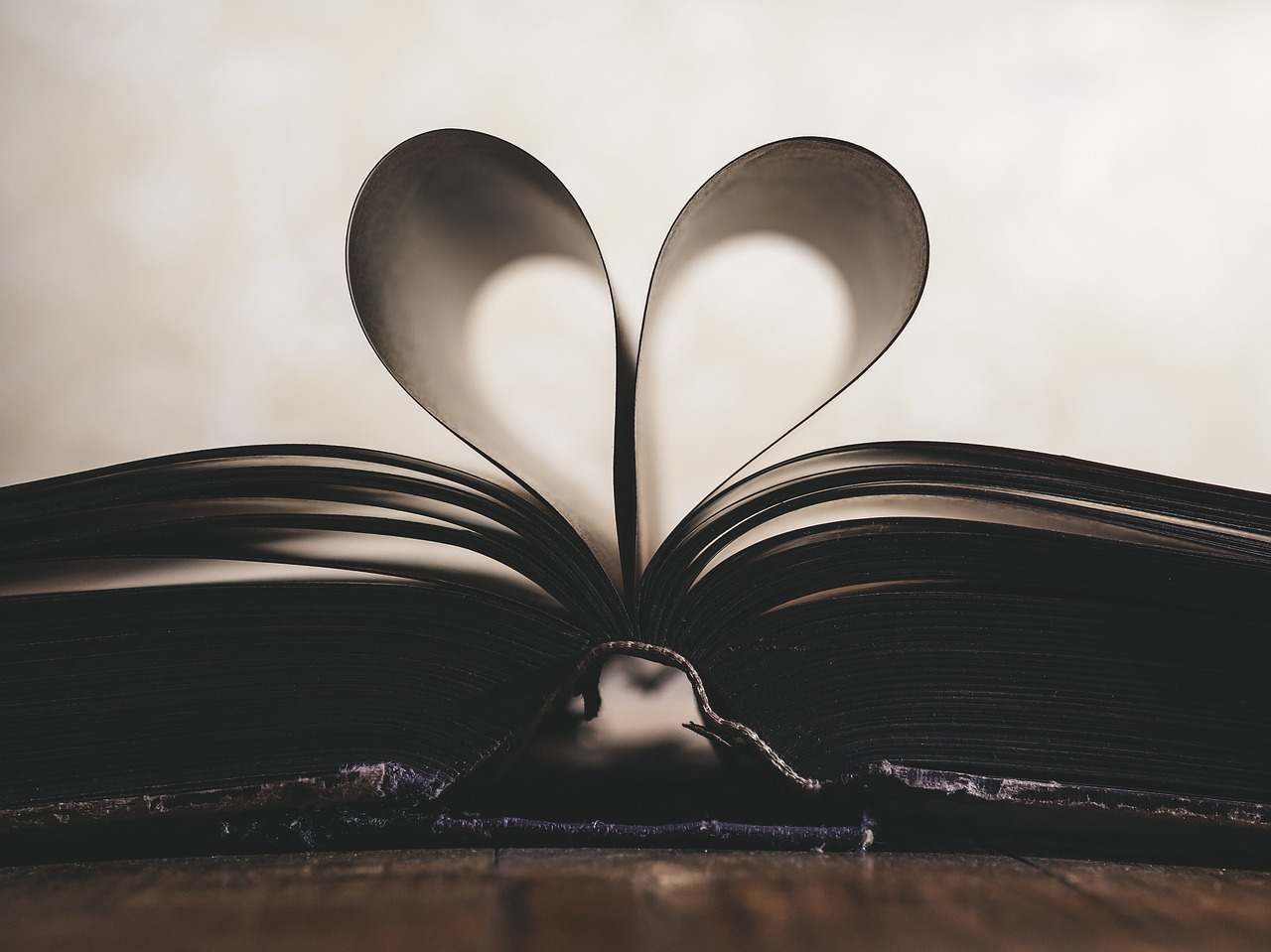 15 Inspirujących Cytatów O Nauce I Wiedzy