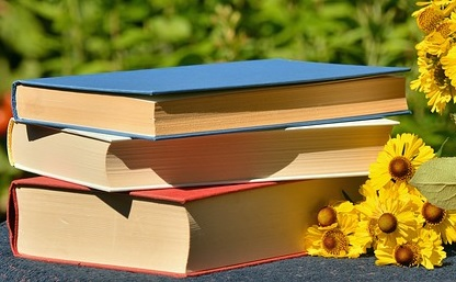 libri in francese