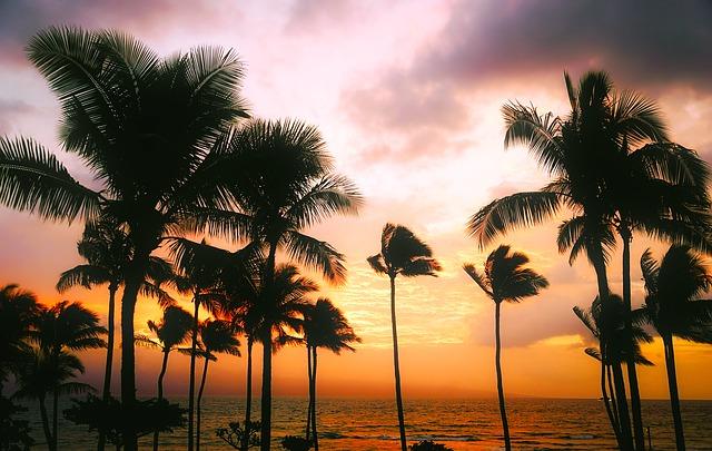 hawaii-1945486_640