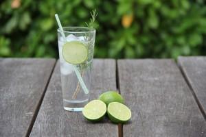 Gin e Tônica