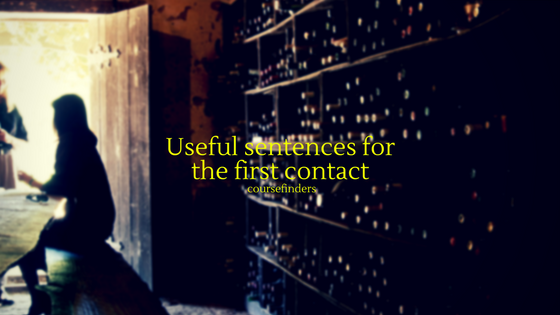 Useful sentences for the first contact