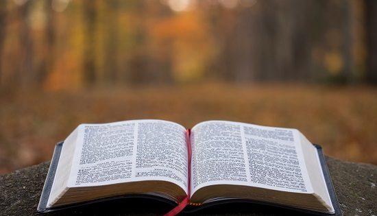 Expresiones Idiomáticas En Inglés Con La Palabra Book
