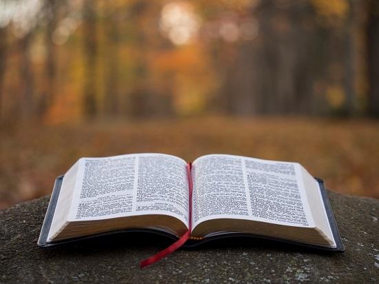 libro-leer-book