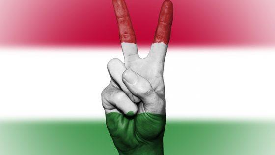 ¿Por qué aprender húngaro?