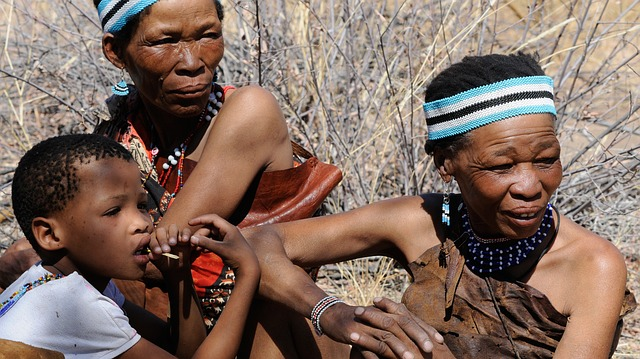 Anno Internazionale delle Lingue Indigene