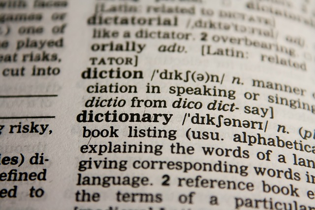 If you want to learn new vocabulary effectively you will spend a lot of time with an open dictionary. Use our tips.