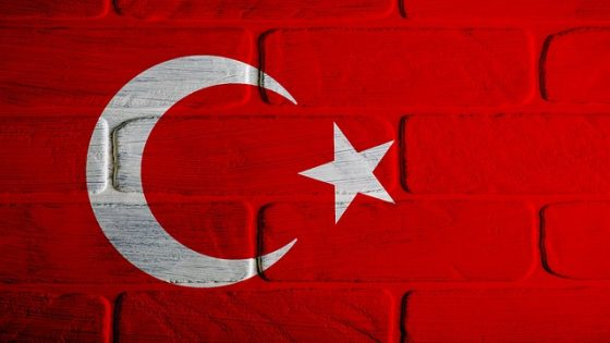 perché studiare turco
