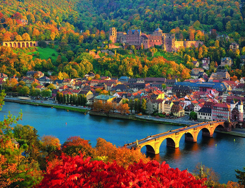 Heidelberg University | Ranking & Review