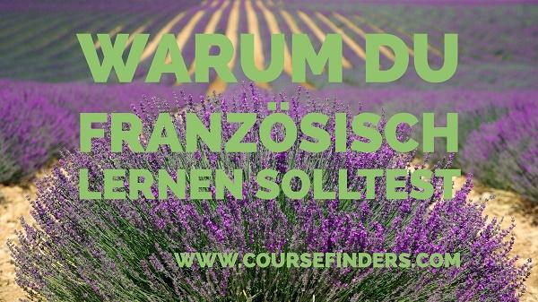 Französisch translation English German dictionary Reverso